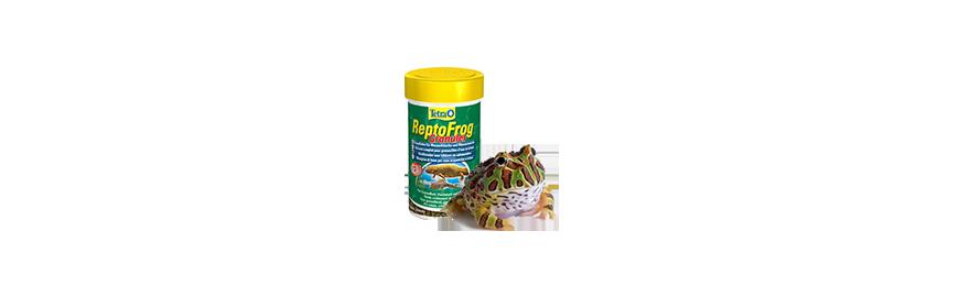 Karmy dla żaby